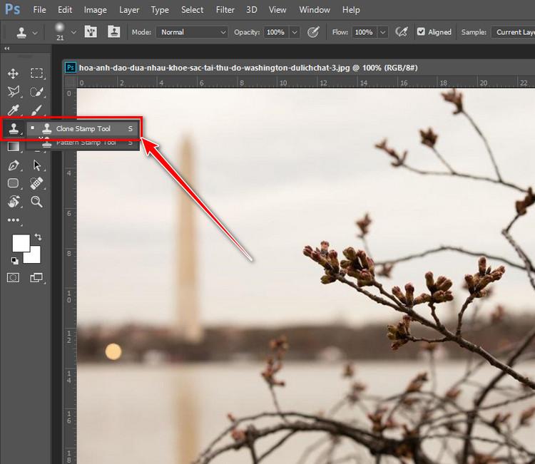 Hướng Dẫn Sử Dụng Clone Stamp Tool Để Sửa Ảnh Photoshop CC 1/2021