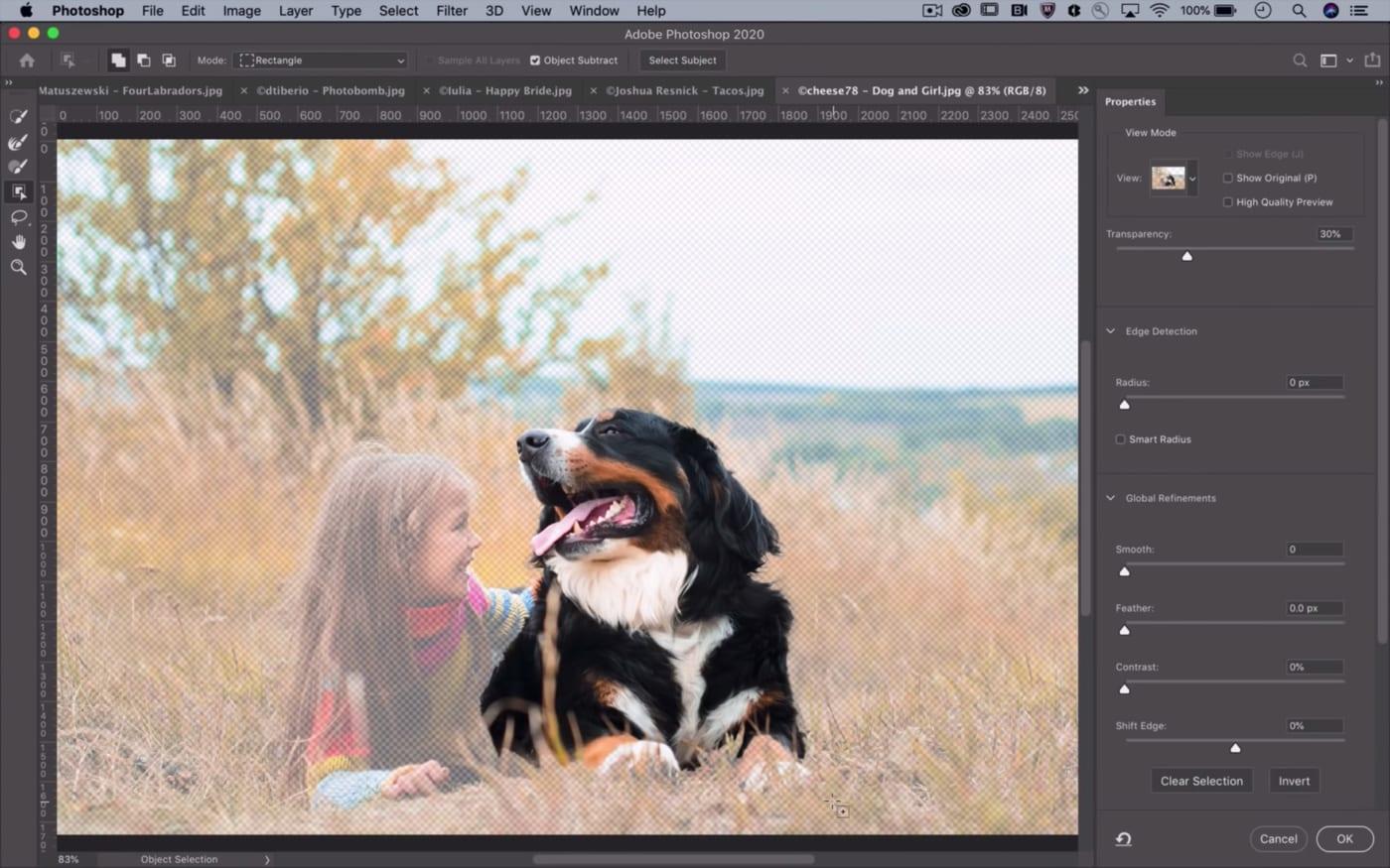 AI mới của Photoshop giúp tự động tạo vùng chọn của vật thể trong ảnh với  độ chính xác cực cao - VnReview - Tư vấn