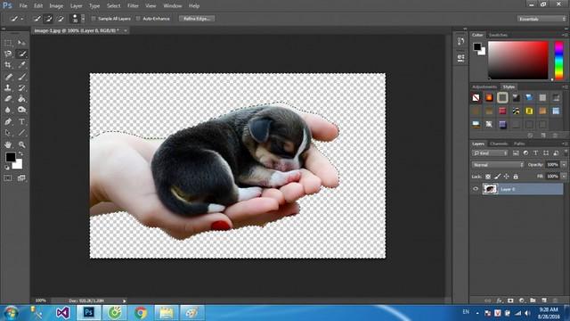 Các cách tách nền cơ bản trong photoshop   Aphoto